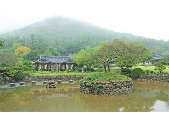 배롱나무가 꽃을 피운 작은 호수 운림지 / 사진=전기홍 기자